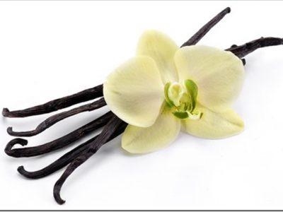 Vanilla Rework 1 57334.1416528458.4255B2255D 2 400x300 - リキッド:NicoticketのFrenilla(フレニラ)をレビュー。とっても甘いフレンチバニラ味