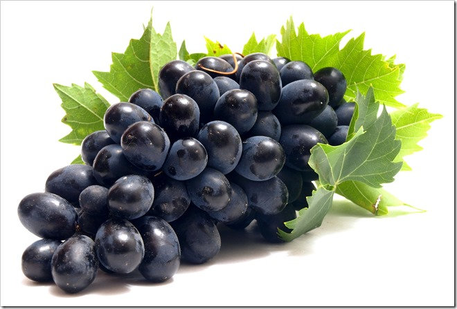 grapes 02255B1255D 2 - 【リキッド】Nicoticket新製品(復刻版?)「Grape(グレープ)」リキッド【清涼剤入りブドウキャンディフレーバー?】