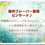 grapevine thumb255B2255D 2 150x150 - 日本人「I am japanese!」海外の友人「じゃっぷさぁ…」