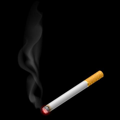 3f59824abb640b1d7e07e686c0c426d8 realistic burning cigarette with smokes thumb255B2255D 2 - 【コラム】タバコのデメリットは電子タバコで解消することができるのか?リアタバデメリットをまとめてみた。