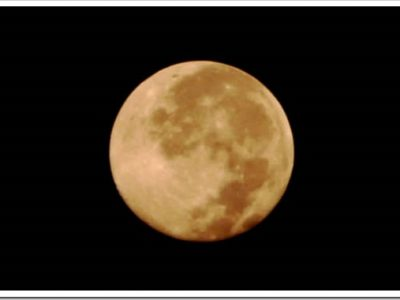 maxresdefault thumb255B2255D 2 400x300 - 【MK Lab】こいこい(Koi-Koi)Moonlight月見【リキッドレビュー!】