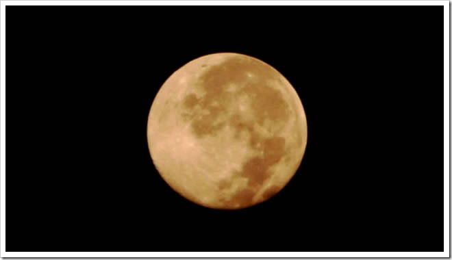 maxresdefault thumb255B2255D 2 - 【MK Lab】こいこい(Koi-Koi)Moonlight月見【リキッドレビュー!】