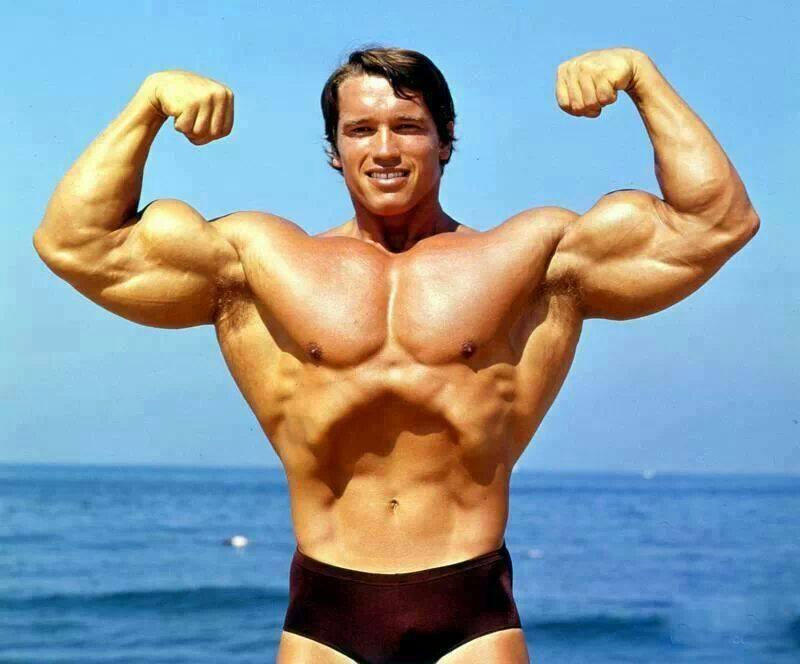 1512670 620389964664621 771857137 n 4 - 【雑記】FastTechで買える筋肉系ガジェットまとめ【シュワちゃんになりたい】