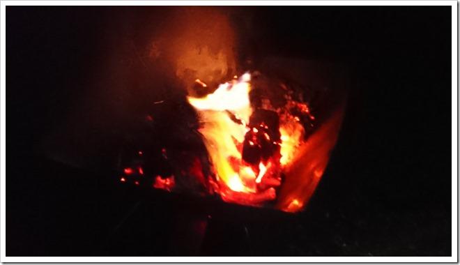 DSC 1186 thumb255B2255D 2 - 【実験】2017年新春VAPE実験!!「グリセリンは果たして燃えるのか?!」焚き火で燃やしてみた。そして最終日焼肉とギョ~ザとニジマスで〆!