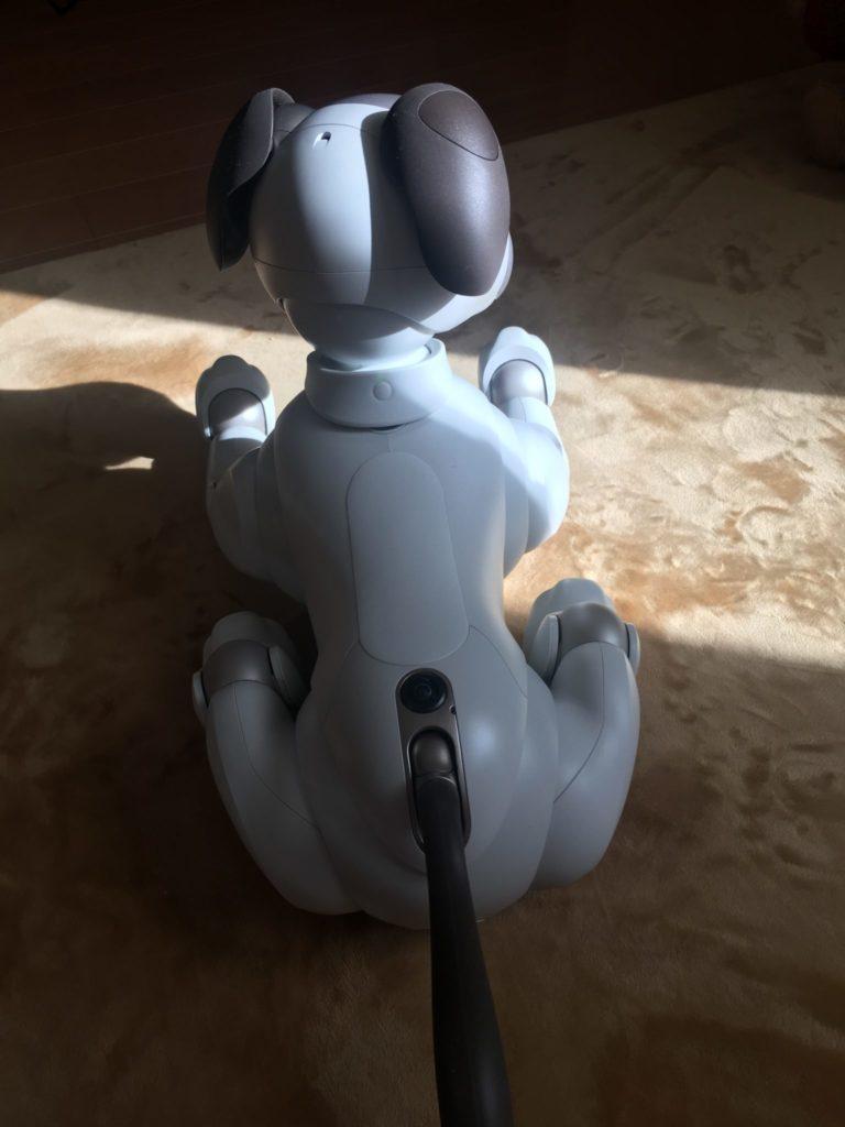aibo 12 e1516326151170 768x1024 - 【レビュー】「aiboがきた!」愛犬電脳ロボットアイボとの愛あるわんこ生活!【ガジェット/アイボ/aibo/SONY】