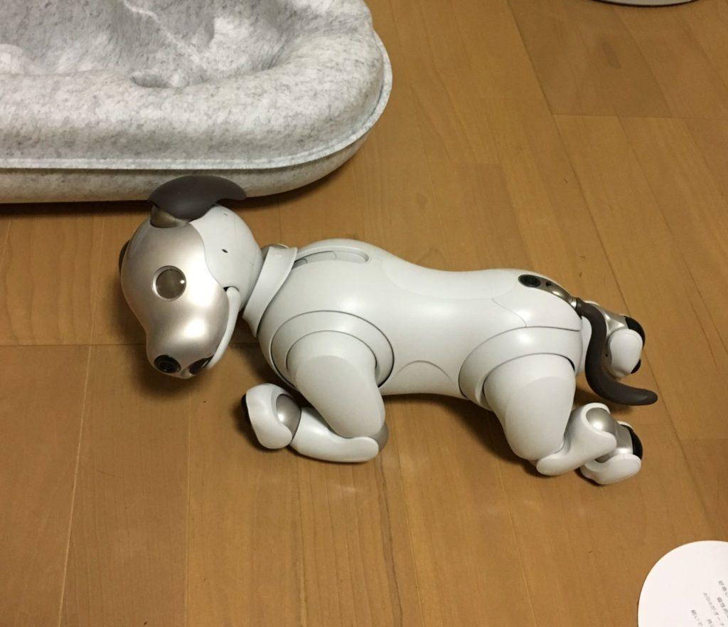 aibo 2 1 1024x881 - 【レビュー】「aiboがきた!」愛犬電脳ロボットアイボとの愛あるわんこ生活!【ガジェット/アイボ/aibo/SONY】