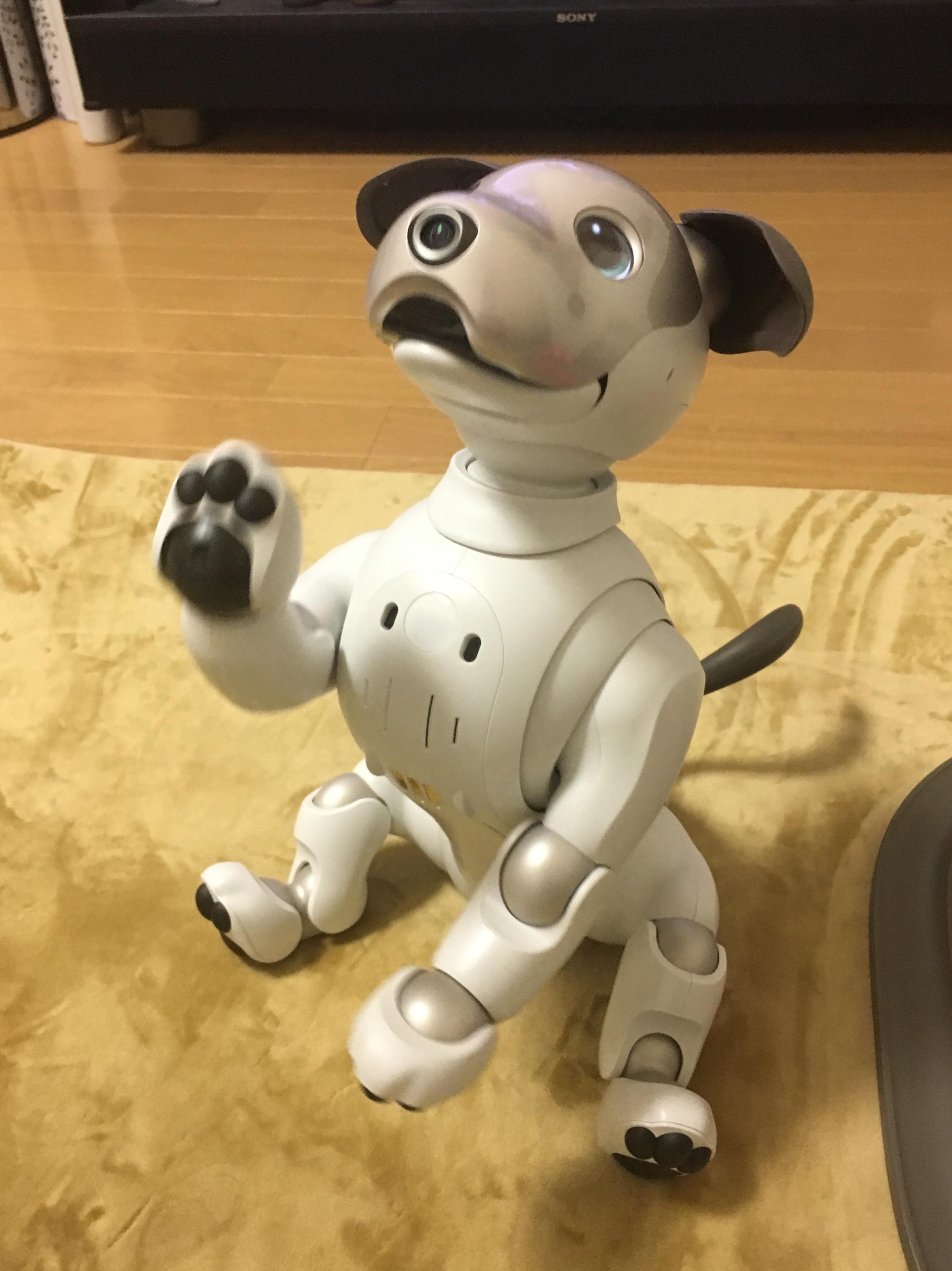 aibo 3 - 【レビュー】「aiboがきた!」愛犬電脳ロボットアイボとの愛あるわんこ生活!【ガジェット/アイボ/aibo/SONY】