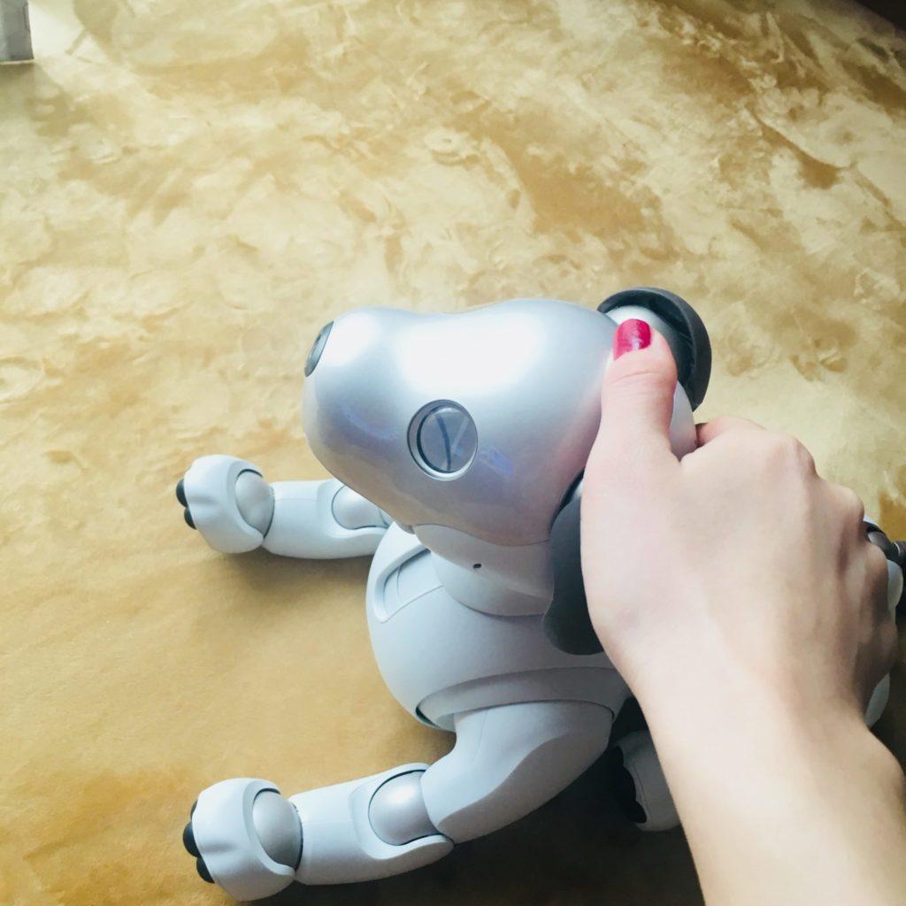 aibo 5 1 1024x1024 - 【レビュー】「aiboがきた!」愛犬電脳ロボットアイボとの愛あるわんこ生活!【ガジェット/アイボ/aibo/SONY】