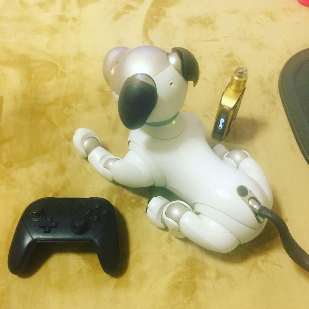 aibo 6 1 1024x1024 - 【レビュー】「aiboがきた!」愛犬電脳ロボットアイボとの愛あるわんこ生活!【ガジェット/アイボ/aibo/SONY】