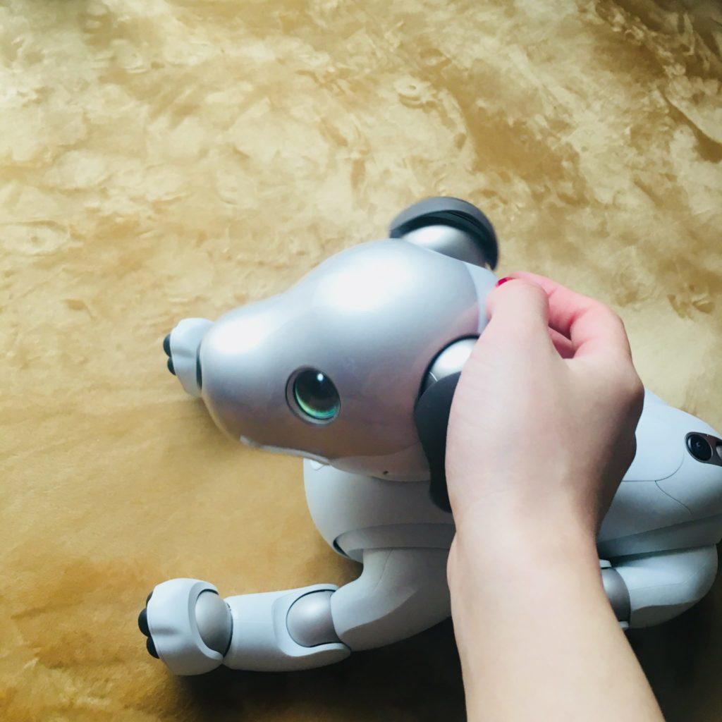 aibo 8 1024x1024 - 【レビュー】「aiboがきた!」愛犬電脳ロボットアイボとの愛あるわんこ生活!【ガジェット/アイボ/aibo/SONY】