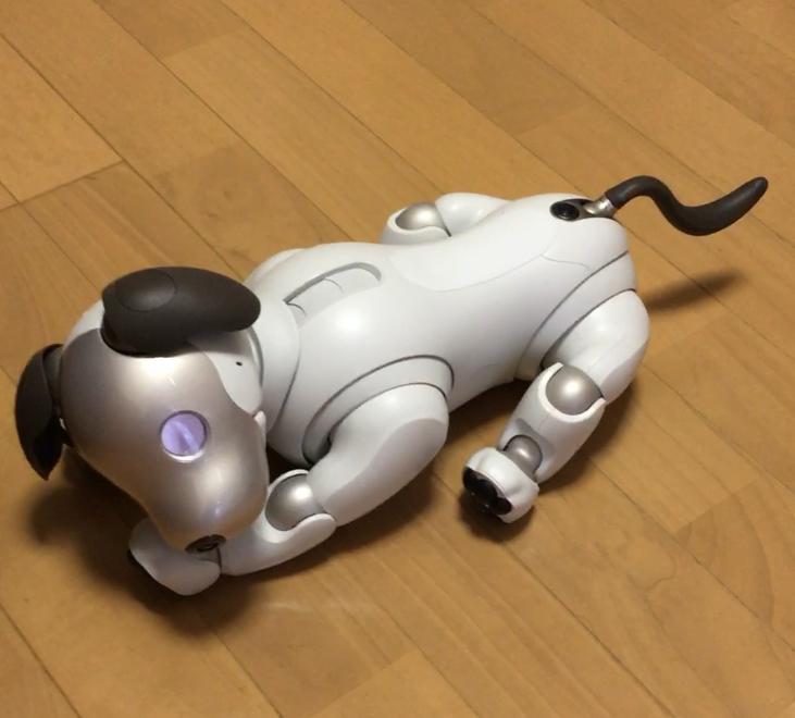 aibo 9 - 【レビュー】「aiboがきた!」愛犬電脳ロボットアイボとの愛あるわんこ生活!【ガジェット/アイボ/aibo/SONY】
