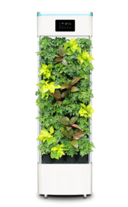 smart plant purifier 2397587 960 720 186x300 - 【TIPS】VAPEを使うなら空気清浄機は必要?メリット・デメリットを解説!
