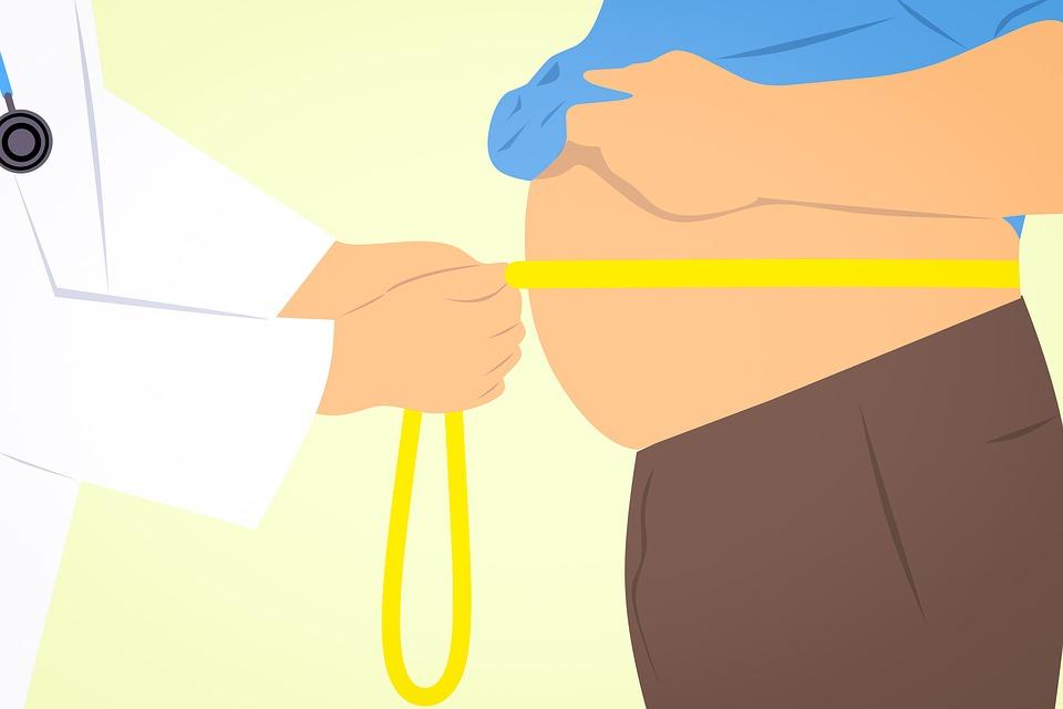 obese 3011213 960 720 - 【TIPS】禁煙すると太る?電子タバコでダイエットできるって本当!?