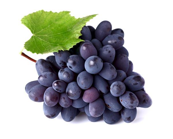 grapes purple thumb - 【レビュー】「FANTASI GRAPE(ファンタジーグレープ)」VAPOREVER Cloud Vapeよりプレミアムリキッドレビュー04/12【One Case/ワンケース】
