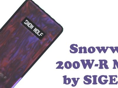 oDSC 3352 400x299 - 【レビュー】『Snowwolf 200W-R Mod by SIGELEI(シグレイ・スノウウルフ)』「俺のVAPEはちょっと違うぜ・・・!」って自慢したい人のための〝卒倒するほど〟エレガントなテクニカルデュアルバッテリーMODのご紹介。