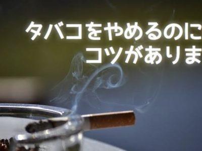 61AC9270 B414 4856 9A95 25A250593B2E 400x300 - 【朗報】タバコ1日3本生活してるけど禁煙できそう!!