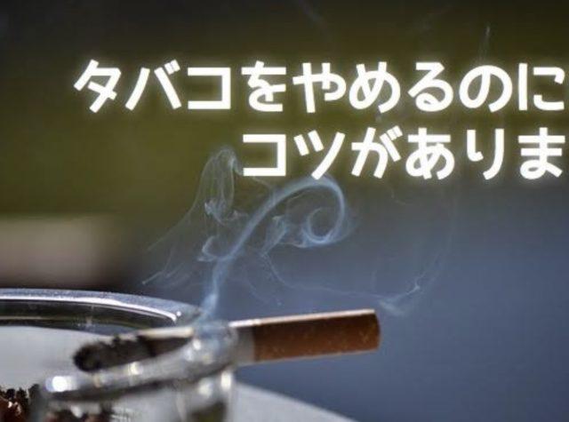 61AC9270 B414 4856 9A95 25A250593B2E 640x475 - 【朗報】タバコ1日3本生活してるけど禁煙できそう!!
