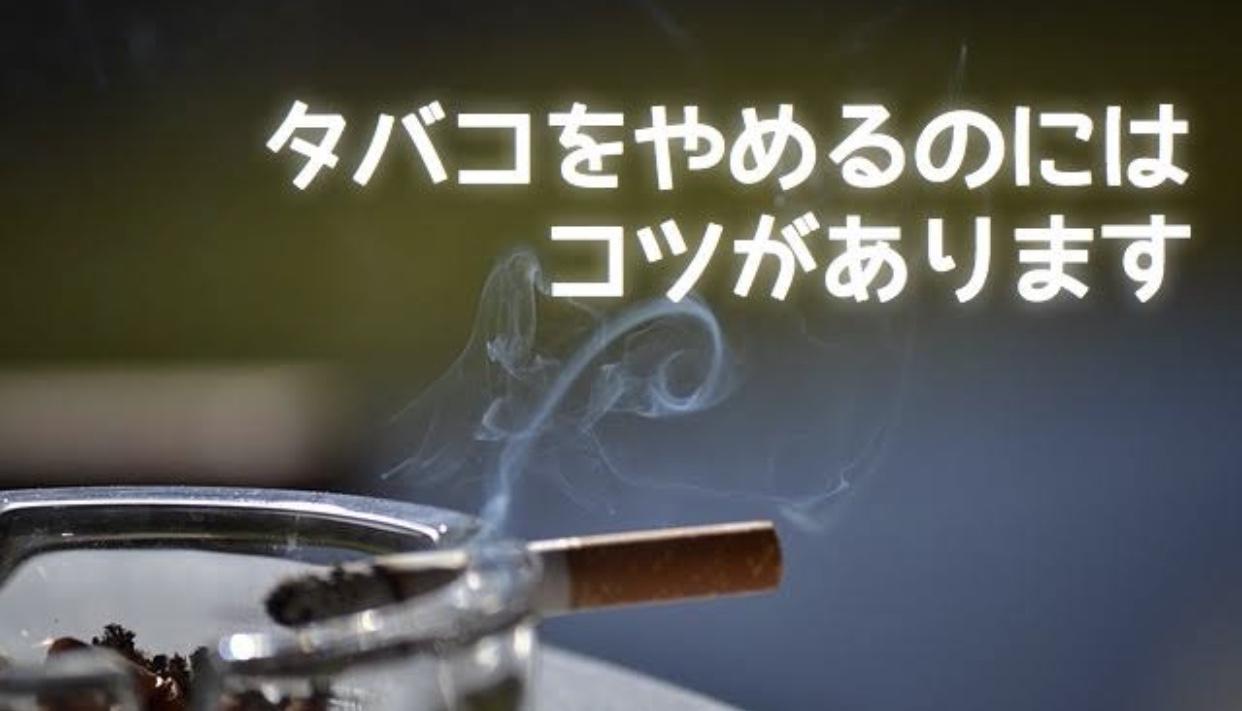 61AC9270 B414 4856 9A95 25A250593B2E - 【朗報】タバコ1日3本生活してるけど禁煙できそう!!