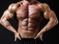 BO151030535008 TP V 202x150 - 【筋トレ】筋トレをやりたいあなたにおすすめ!最強の腹筋ローラーを紹介!