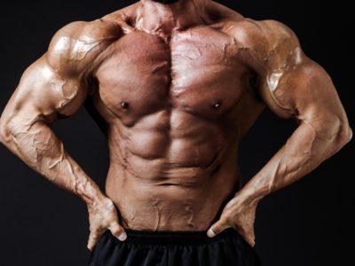 BO151030535008 TP V 400x300 - 【筋トレ】筋トレをやりたいあなたにおすすめ!最強の腹筋ローラーを紹介!
