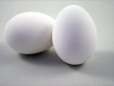 white eggs 500x500 thumb 400x300 - 【筋トレ】最近ハマってる筋トレ飯が卵白オムレツ+クレイジーソルト+シーチキンの件について