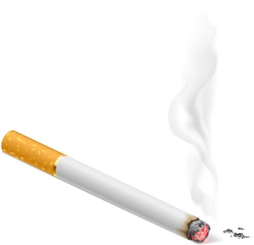 03f6e7f939c6f03931222ab4be98c66b thumb - 【まとめ】 【社会】広がる喫煙者不採用ーたばこを吸う人は採用しません――。最近、「非喫煙」を採用条件に掲げる企業や大学が増加中