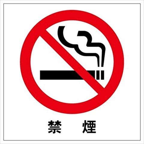 41BngjfdDL. SX466 thumb - 【タバコ】来年2月から大阪駅と天王寺駅周辺も路上禁煙 違反者は罰金