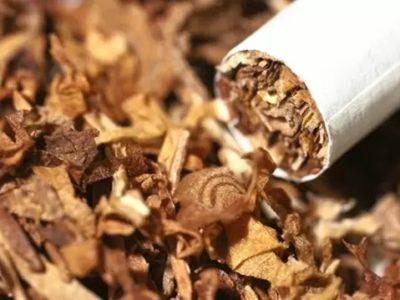 620x349 thumb 400x300 - 【悲報】喫煙者さん、わざわざ喫煙所の真横でタバコを吸いポイ捨て、注意されると「訴えるぞ」と逆ギレするも、条例違反だと言われ逃走