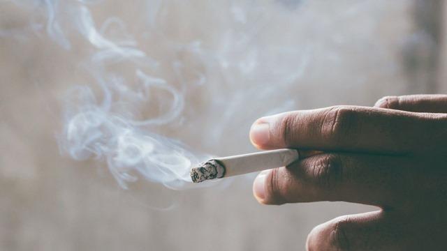 img 68d7464c4be450c89dc8ad95c1c2f88d208564 thumb - 【VAPEにする?】たばこ税の高負担 喫煙者に還元を【たばこ高い】