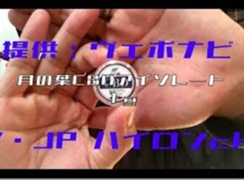 mqdefault 2 thumb 343x254 - 【レビュー】月の葉 CBD アイソレート 1000mgレビュー~どんなリキッドもCBDリキッドに!?月の葉CBDアイソレート1000mg<*`∀´*>!!【CBD】~