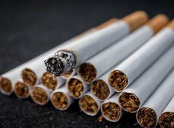 images thumb 1 343x254 - 【芸能】「昔吸ってたママ友に教えてもらおうと思ったけど…」広末涼子、初挑戦の喫煙シーンは「コツコツこっそり練習」