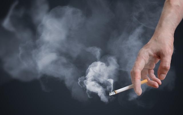 SmokingCigarette thumb - 【タバコ】女さん、受動喫煙で死にかける