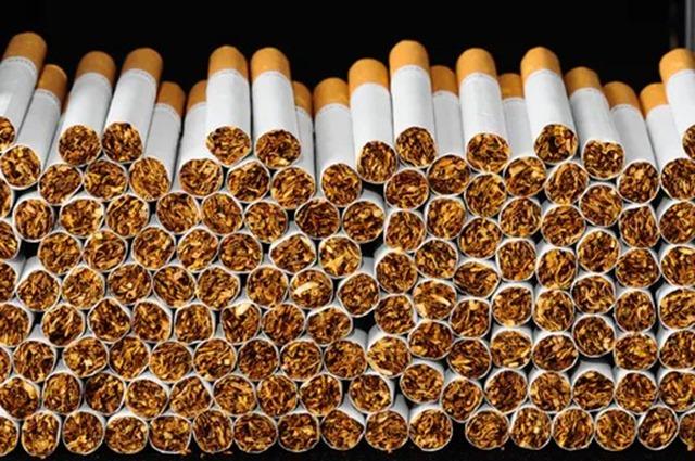 file 20180823 149481 2rzsyy thumb - 【喫煙】タバコ吸ってるやつってバカだよな