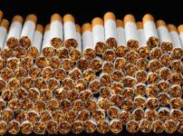 tobacco cigarettes scaled 1 202x150 - 【フランス研究/Covid-19】パリ最大の病院医師は喫煙者の発生率の低さに驚き「ニコチンが過剰な免疫反応を緩和」