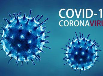 tn 000695 343x254 - 【速報】 コロナウイルス、やはり中国の武漢研究所からの流出だった!証拠明らかに ★12  [お断り★]