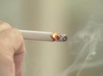 K10012389491 2004152215 20041605 343x254 - 【コロナ】煙草から作ったワクチンが実用化されるぞ 現行のは副反応怖いから期待しよう あるいはタバコ吸おう [828293379]
