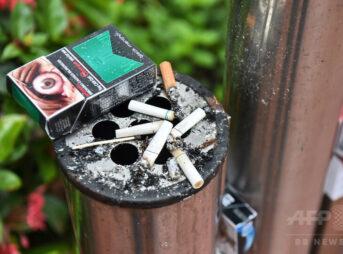 img 0c13a5b64c052dcdb950c6fb2c46 343x254 - 【喫煙】タバコを吸える場所がない… 街を彷徨う「喫煙所難民」たち [123322212]